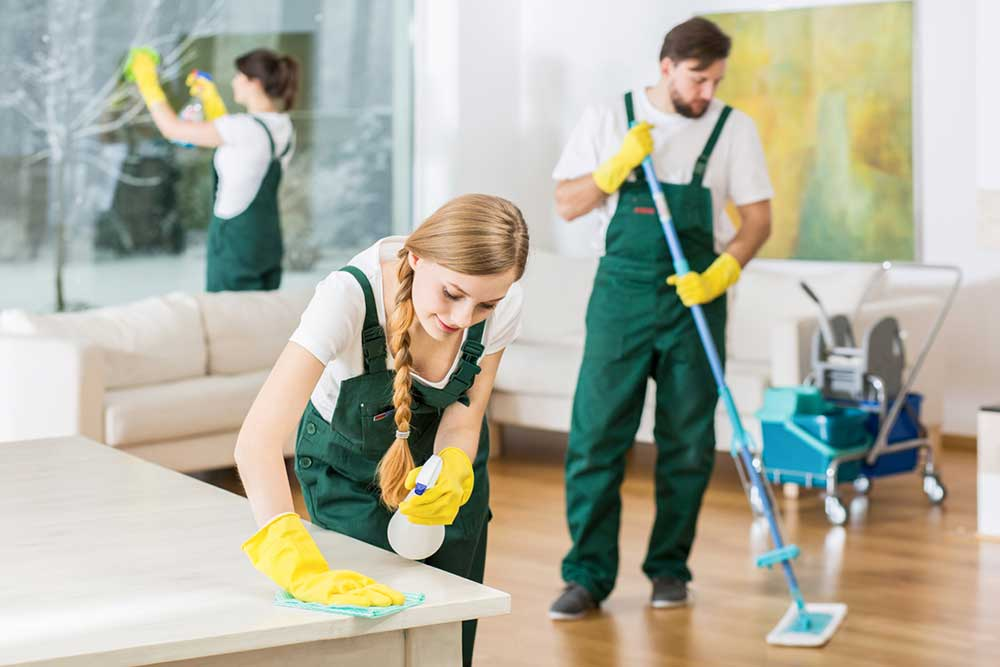 curatenie la domiciliu